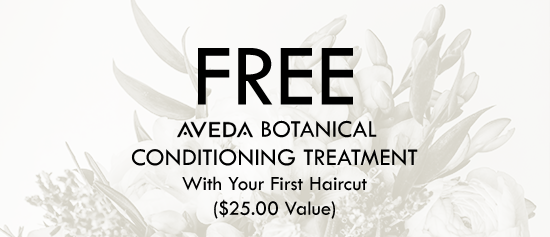 Free Botanical Conditioning Treatment - With Your First Haircut ($25.00 Value)
