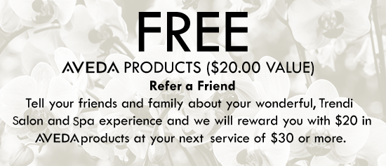 Free Aveda Products ($25.00 Value) -  At Your Next Service of $30.00 or More When You Refer Someone New to Trendi Salon and Spa